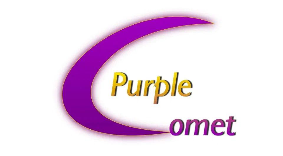 Žáci Gymnázia Cheb slaví úspěch v soutěži Purple Comet 2020